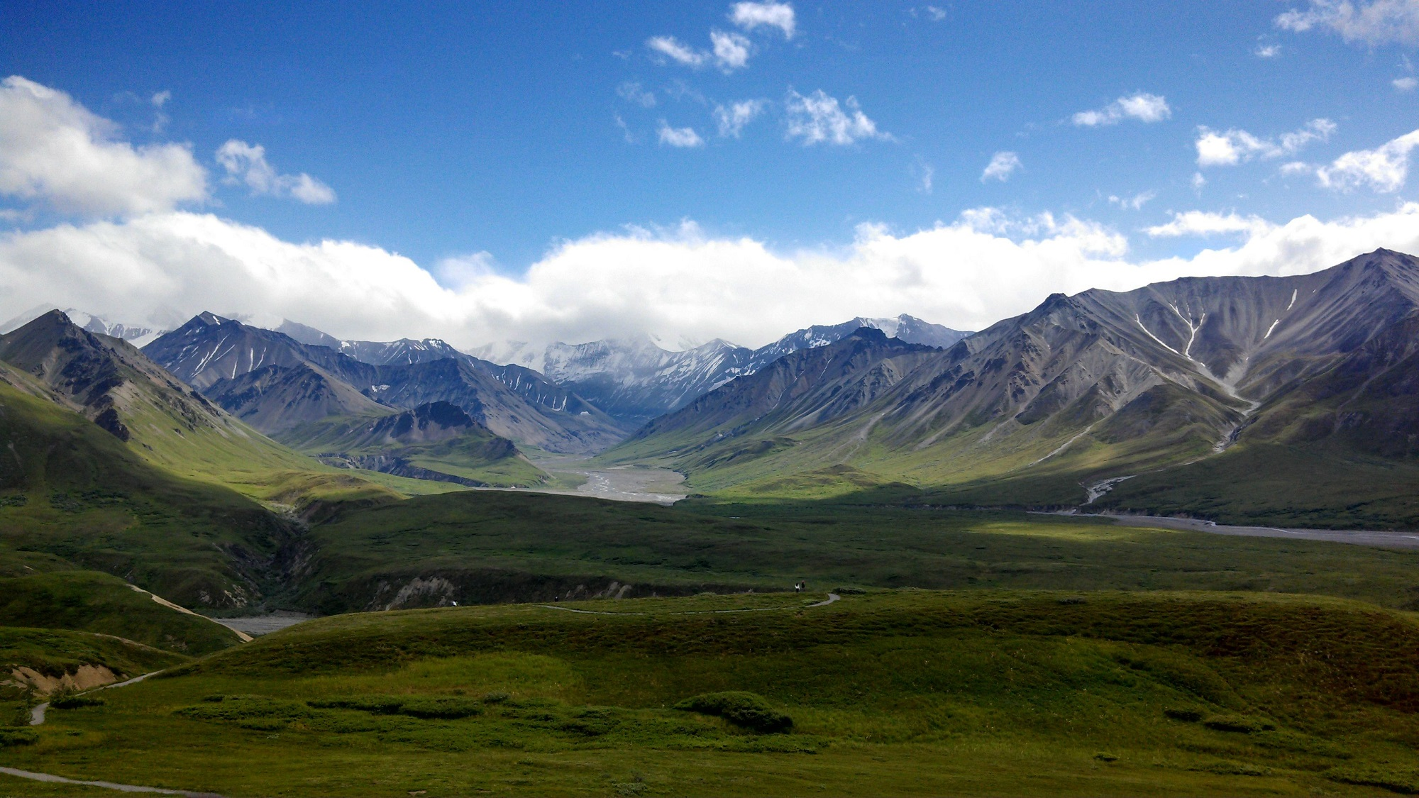 denali national park Denali touch of wilderness is not your typical bed and breakfast we'll send you on your way to denali national park with a fresh hot breakfast.