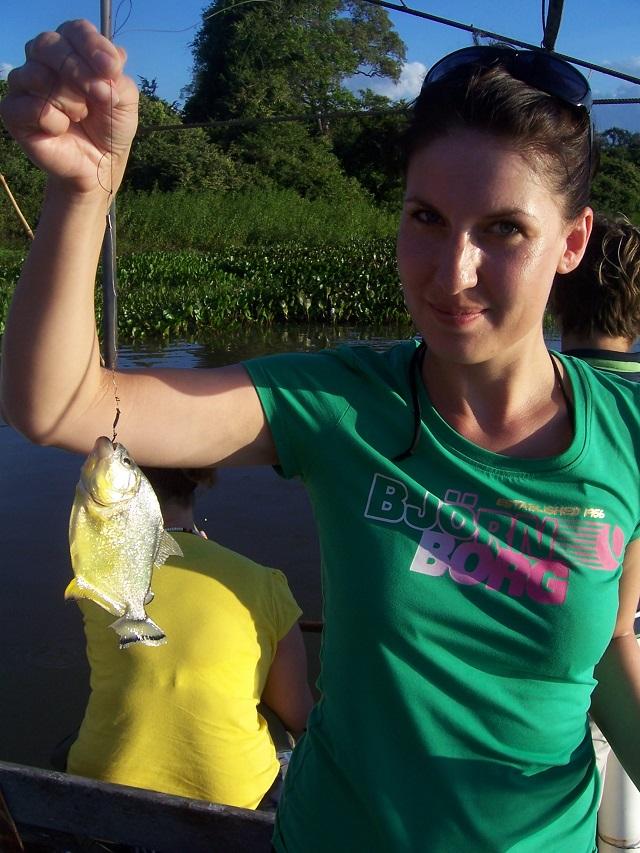 piranha amazone