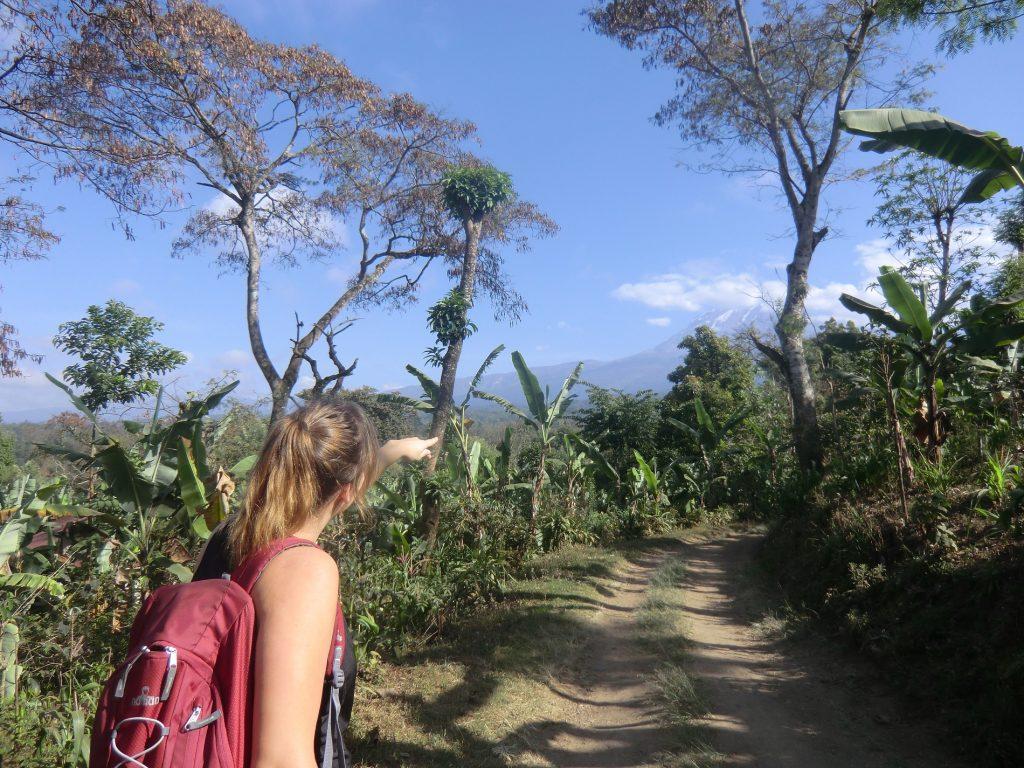 Must-do's Tanzania: beklim de Kilimanjaro