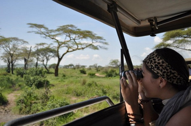 Must-do's Tanzania: op safari