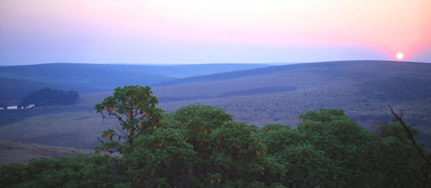 nkhotakota reserve