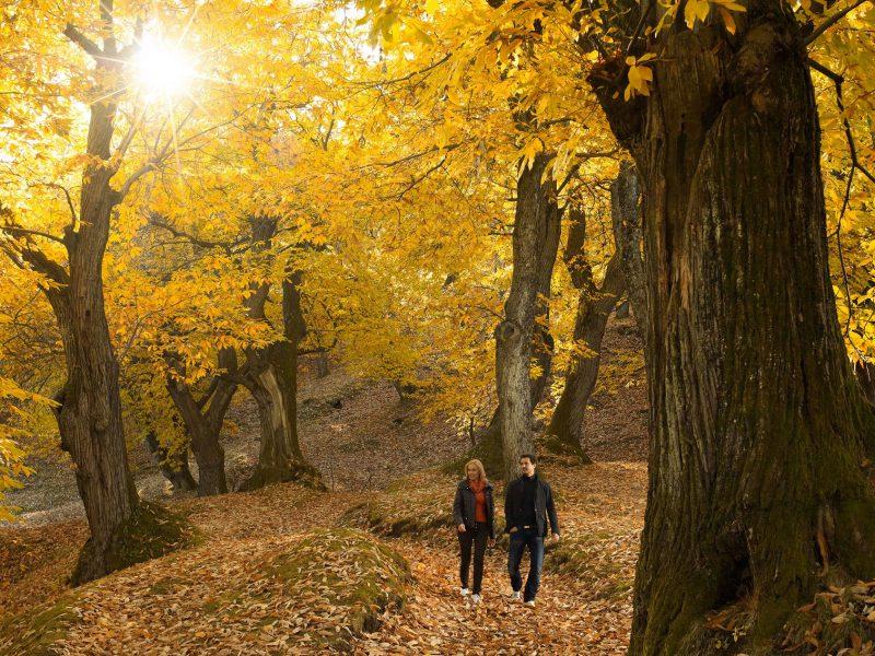 natuurparken van Trentino